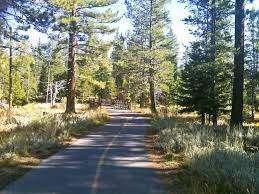 Tahoe Island Drive