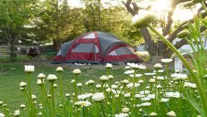 Camping in Lake Tahoe